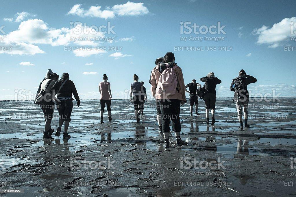 Mud Flat Hiking stock photo