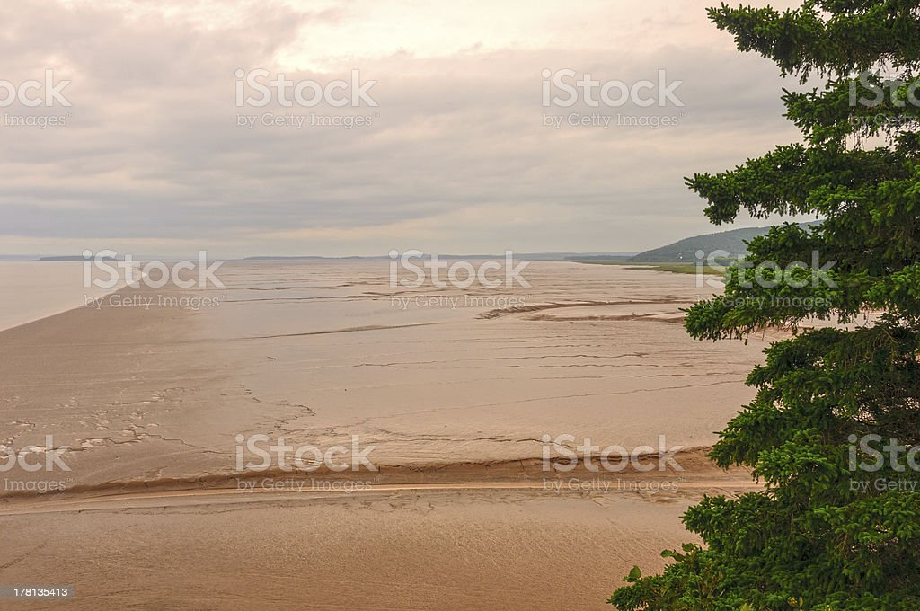 Mud flats at Low tide stock photo