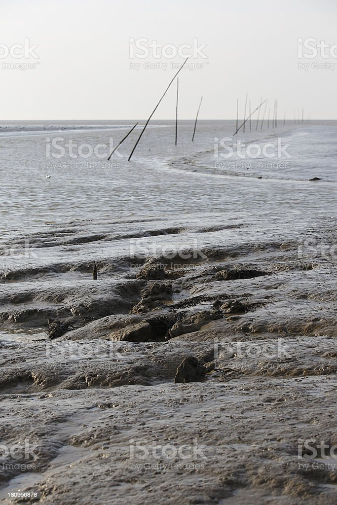 Mud flats royalty-free stock photo