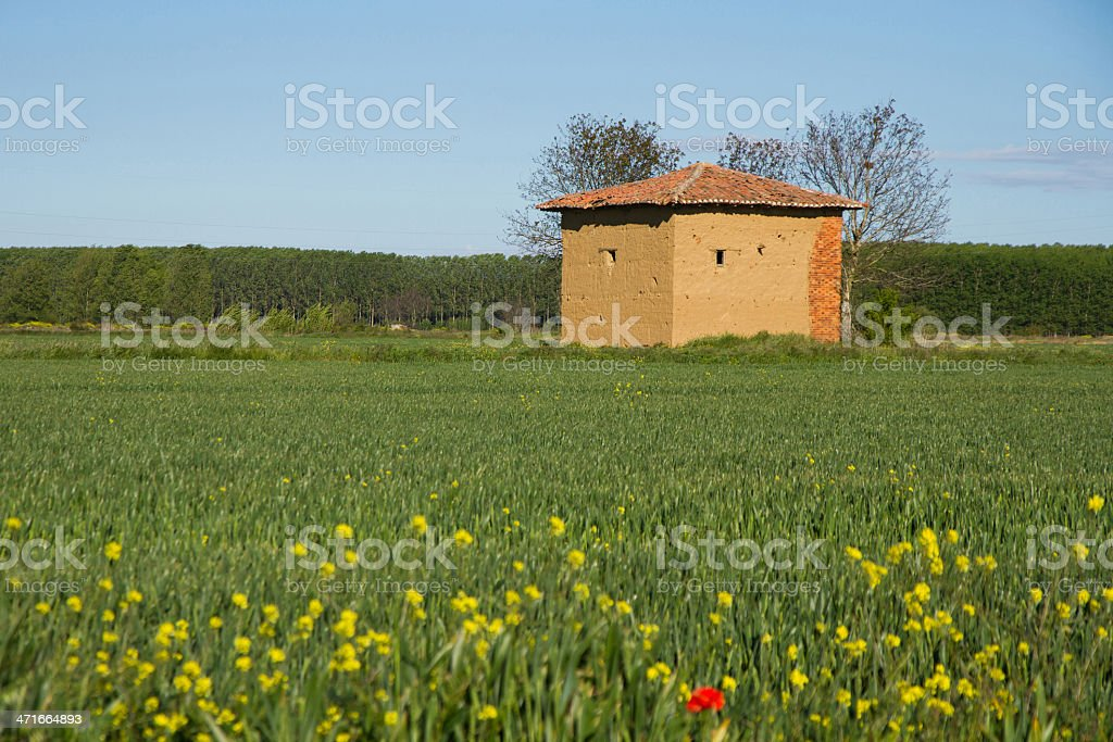 mud hut in the field spring-casa de adobe primavera stock photo