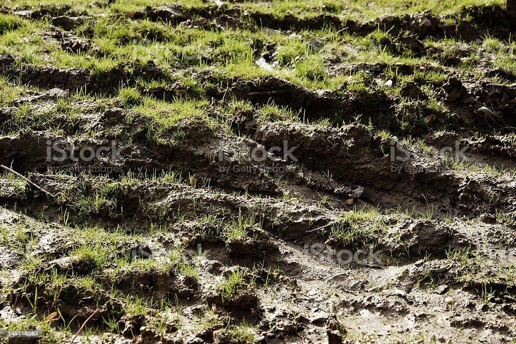 mud I royalty-free stock photo