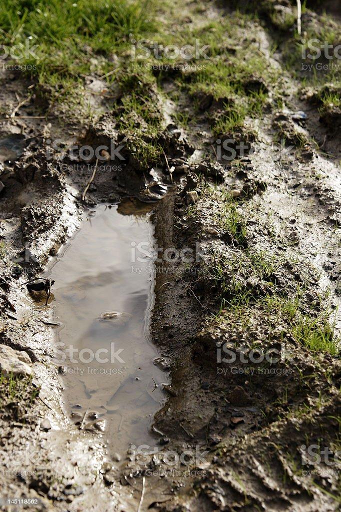 mud II royalty-free stock photo