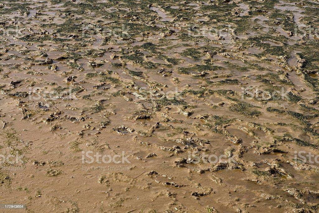 Mud texture royalty-free stock photo