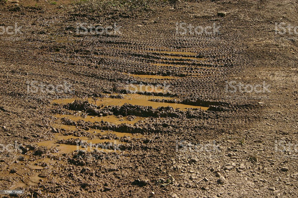 Mud Traces royalty-free stock photo
