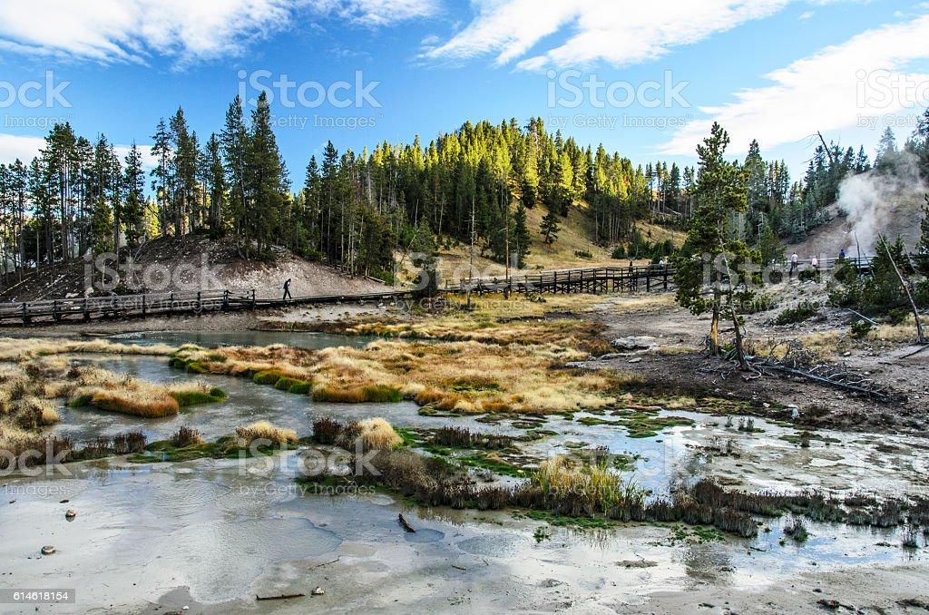Mud Volcano Area, Yellowstone National Park stock photo