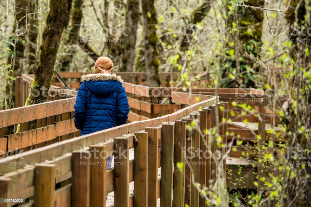Muddy Creek Boardwalk stock photo
