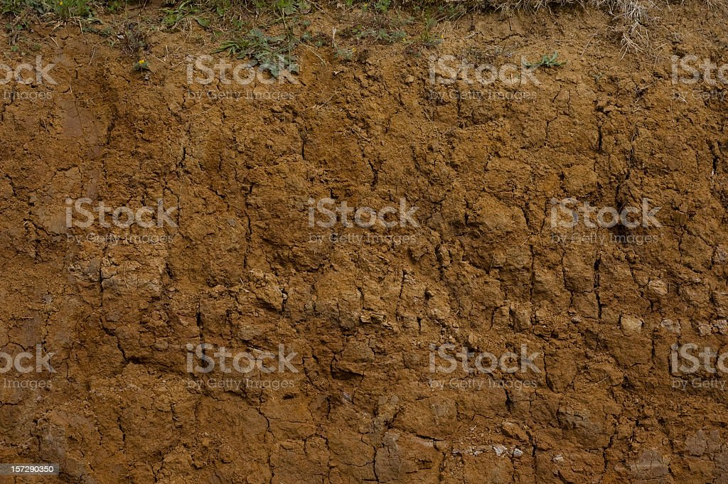 Muddy Cross Section Close-up stock photo
