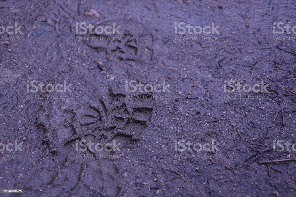 Muddy Foot Print stock photo