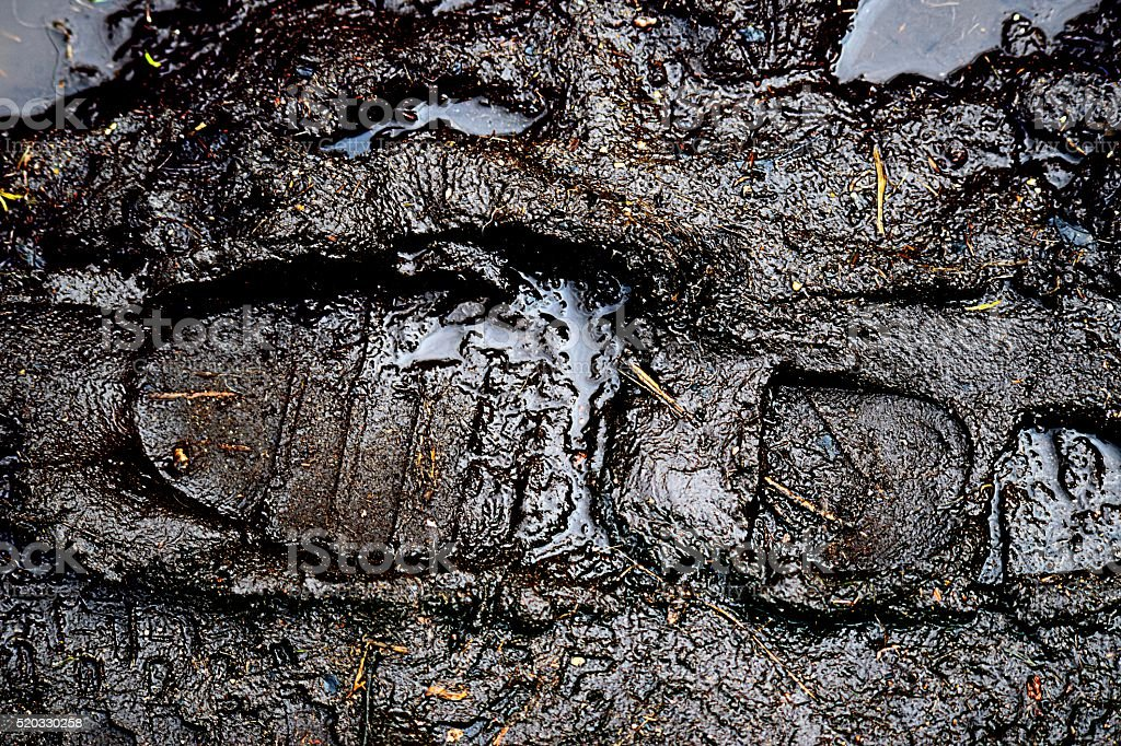 muddy footprint stock photo