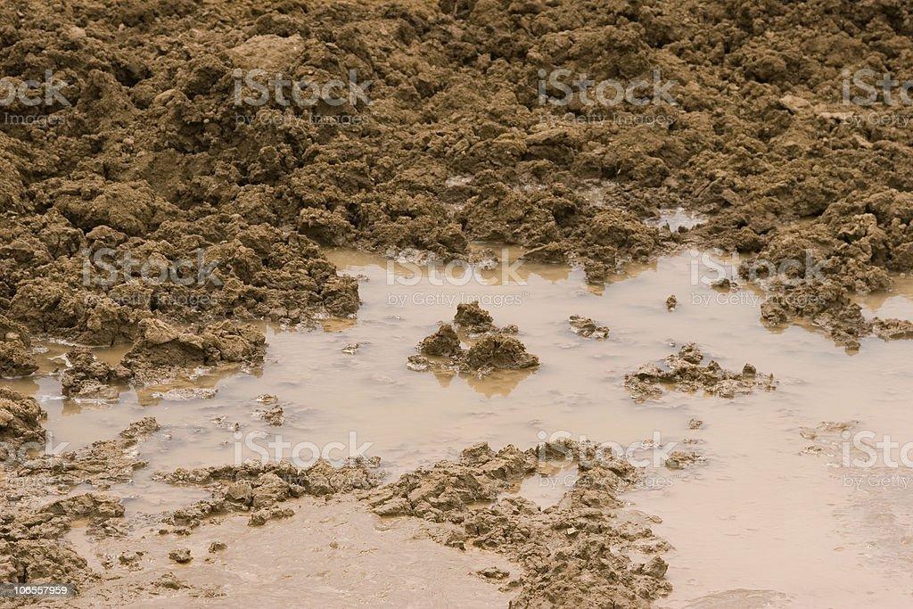Muddy Mess royalty-free stock photo