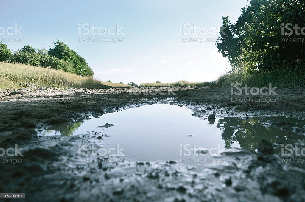 muddy puddle and dirt road landscape royalty-free stock photo