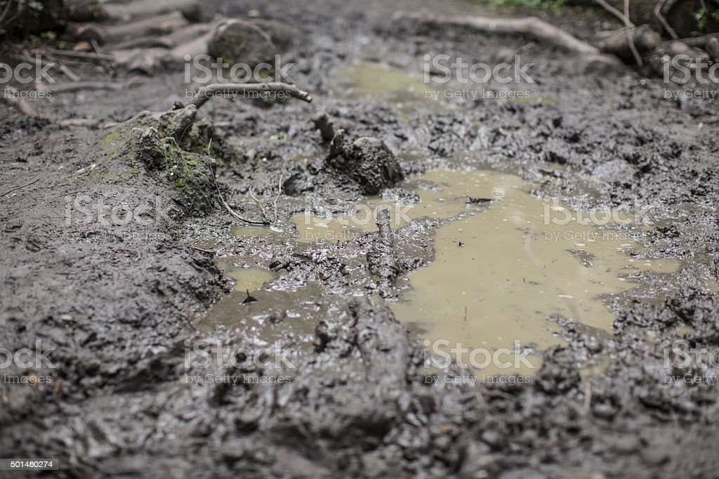 muddy puddle mess floor stock photo