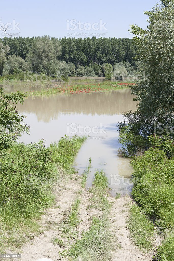 muddy river coast stock photo