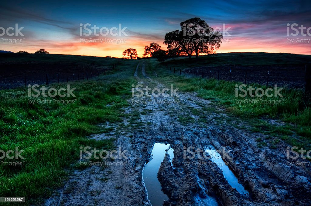 Muddy Road to Sunset royalty-free stock photo