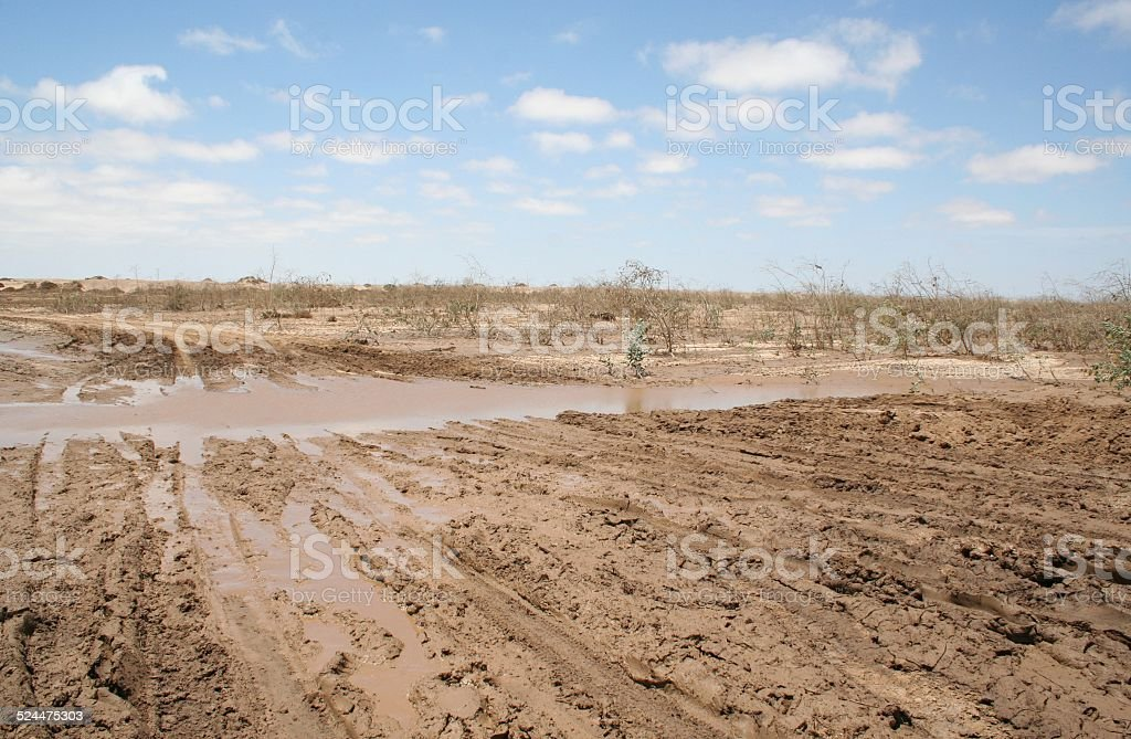 Muddy Salt Road after heavy rain, Skeleton Coast, Namibia, Africa stock photo