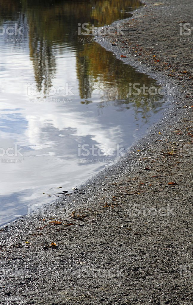 Muddy Shore stock photo