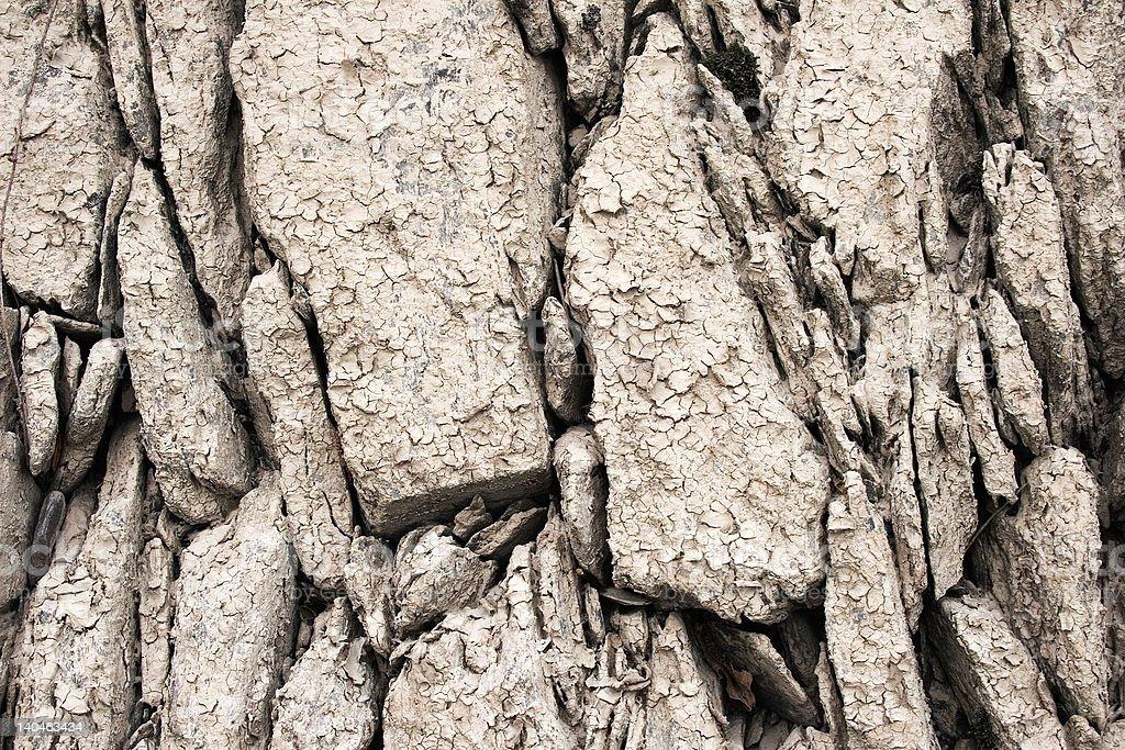 Muddy Stones Texture royalty-free stock photo