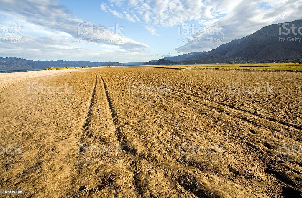 Muddy tracks royalty-free stock photo