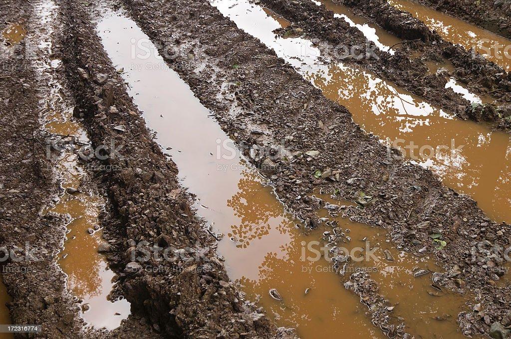 Muddy Trails royalty-free stock photo