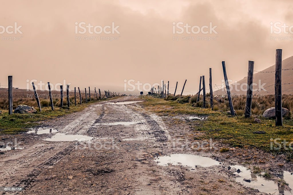Muddy Wet Countryside Road In National Park Llanganate stock photo