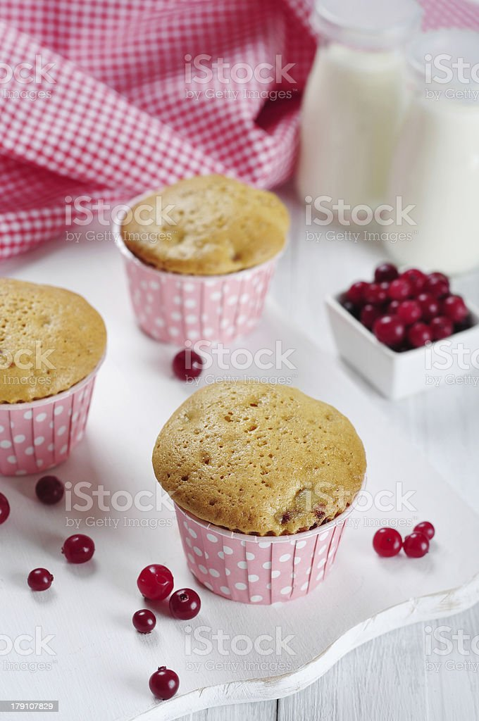 Muffins with fresh cranberries royalty-free stock photo