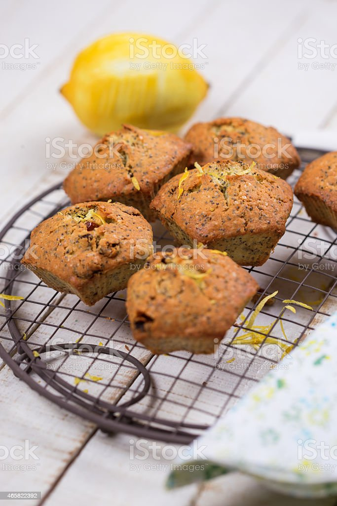 Muffins with lemon stock photo