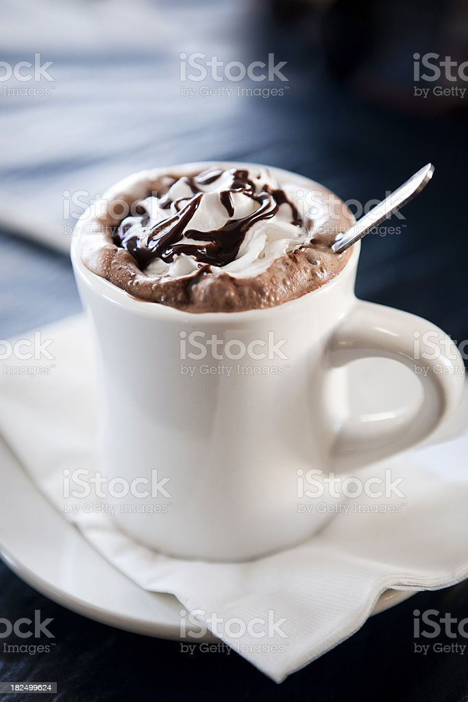 Mug of Hot Chocolate royalty-free stock photo