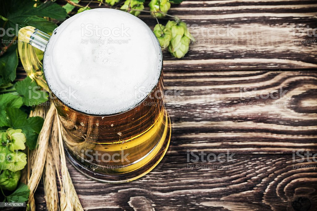 Mug with Beer with hop on a wooden table stock photo
