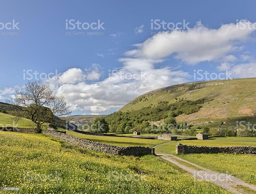 Muker meadows blue sky stock photo