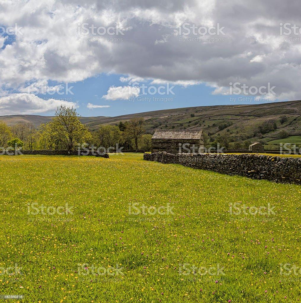 Muker meadows stock photo