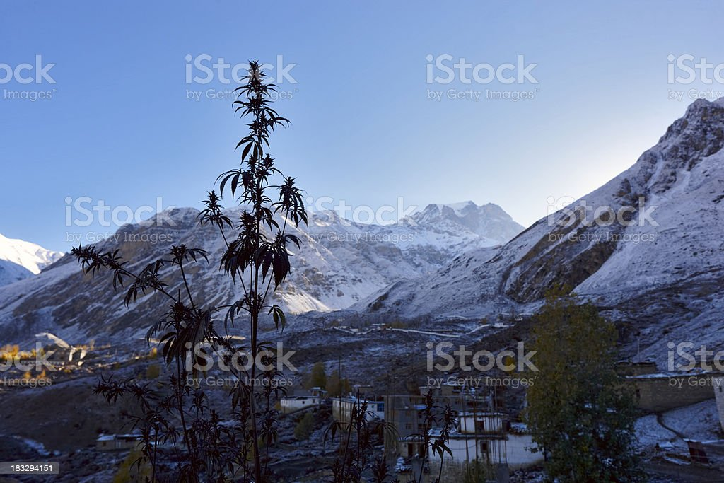 Muktinath.  Annapurna & Everest Circuit. Nepal motives. stock photo