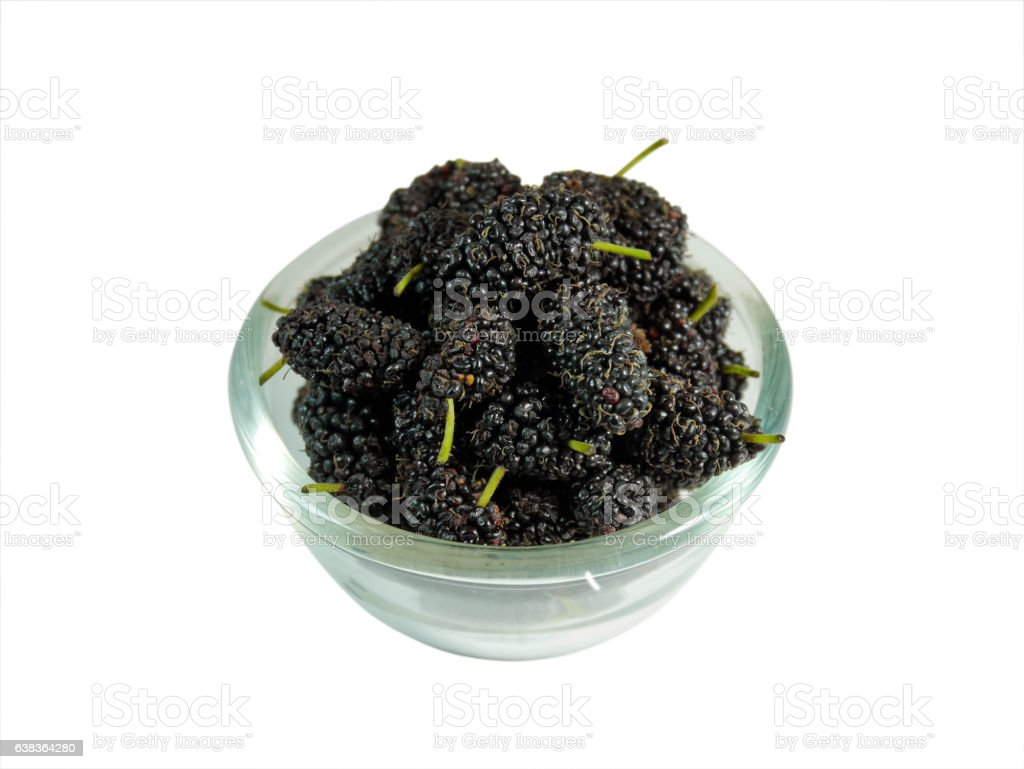 Mulberries in a bowl isolated on white background stock photo