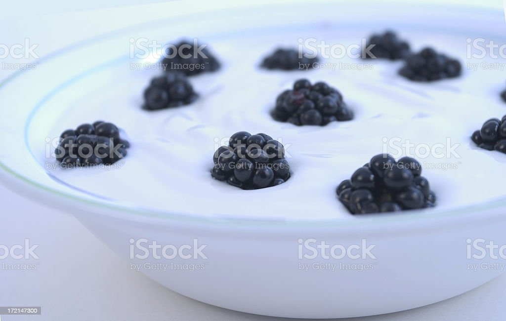 mulberry06 stock photo