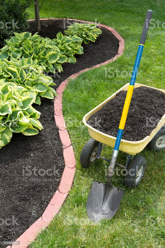 Mulch Bed With Edging royalty-free stock photo