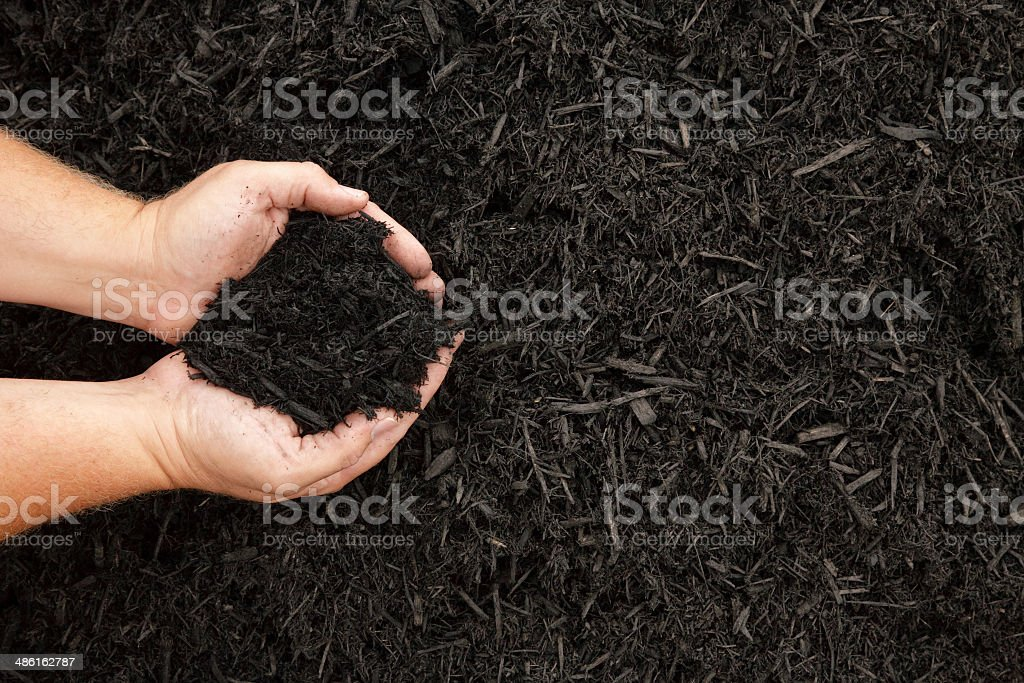 Mulch stock photo