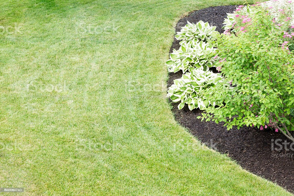 Mulched flowerbed in a neatly manicured green lawn stock photo