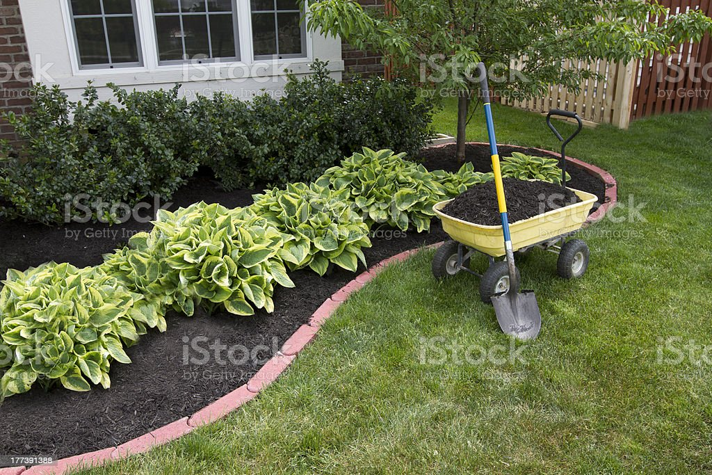 Mulching around the Bushes stock photo