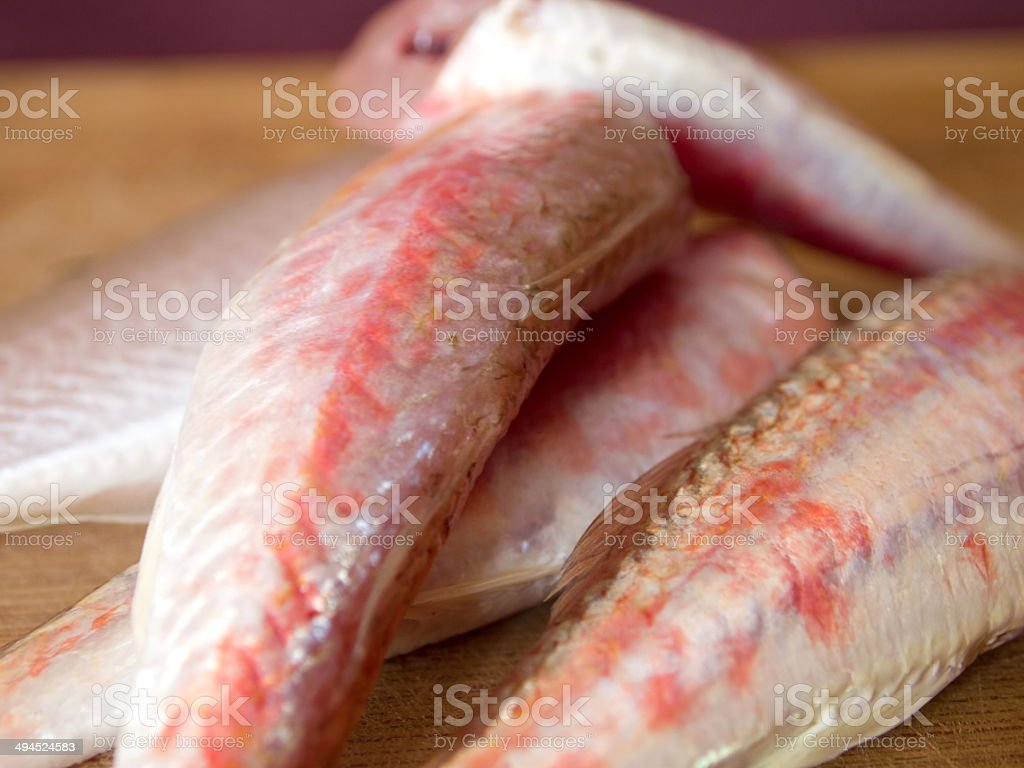 Mullidae fish stock photo