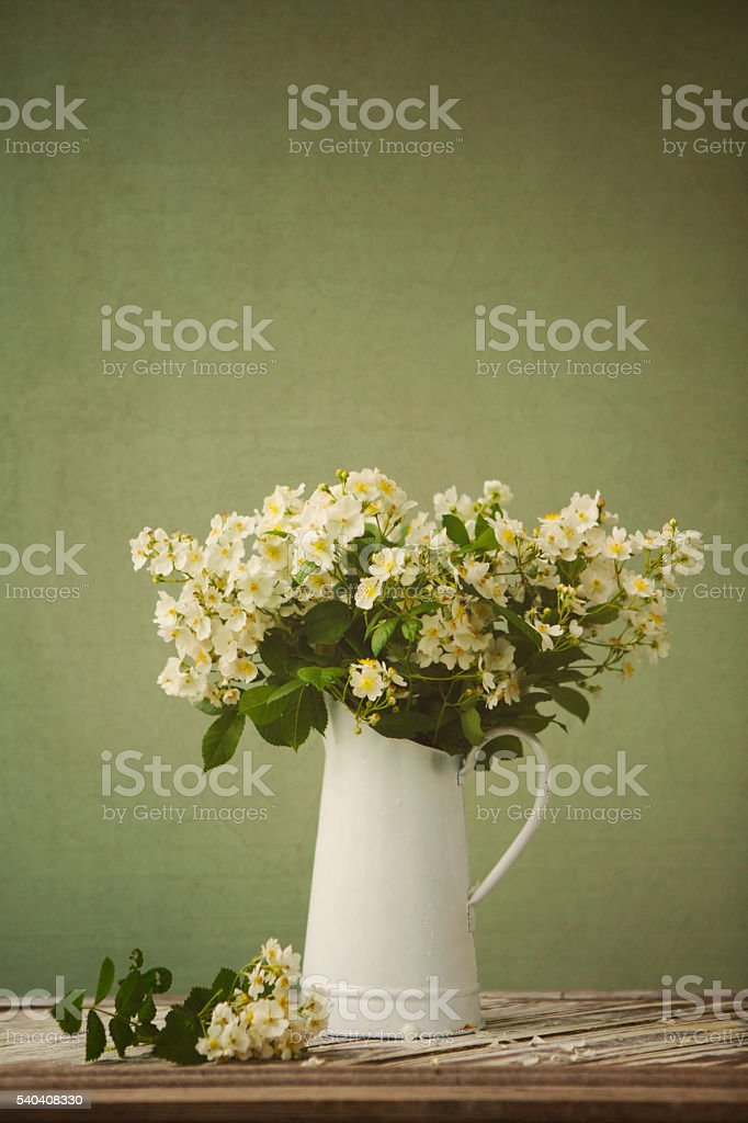 Mult-Flora Rose in a Rustic Vase stock photo