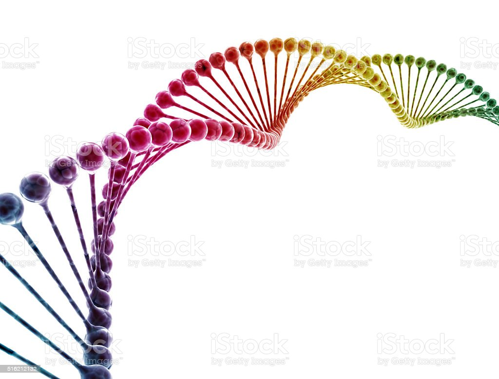 DNA multi color isolated on white background stock photo