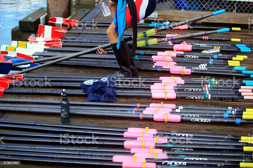 Multi Color Rowing Oars stock photo
