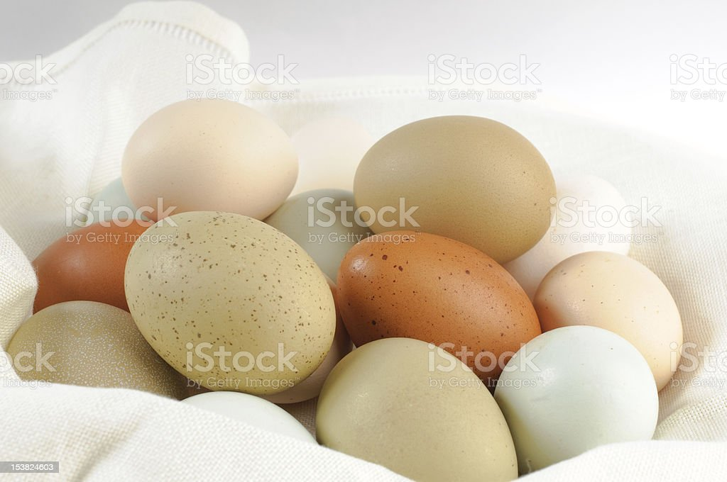 Multi colored chicken eggs royalty-free stock photo