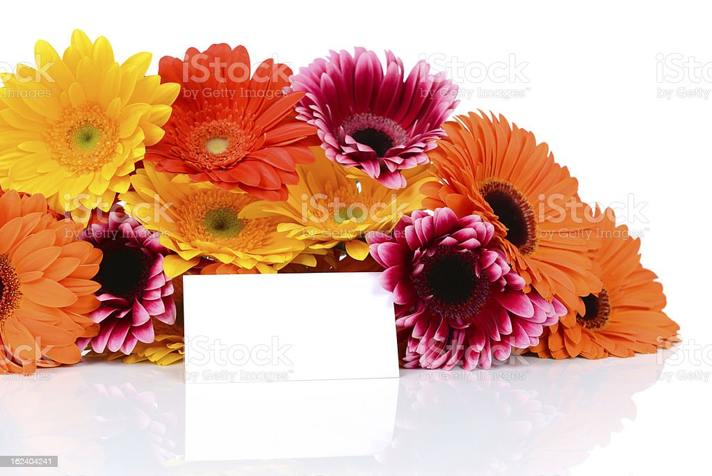 Multi colored gerber flowers with a greeting card royalty-free stock photo