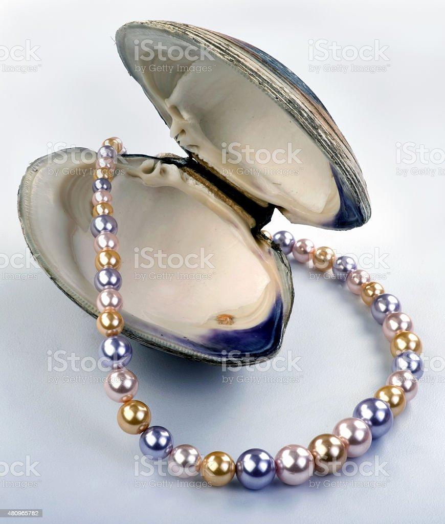 Multi Colored Pearls. stock photo