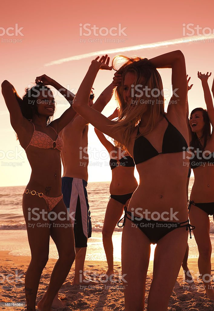 Multi ethnic friends having a beach party royalty-free stock photo