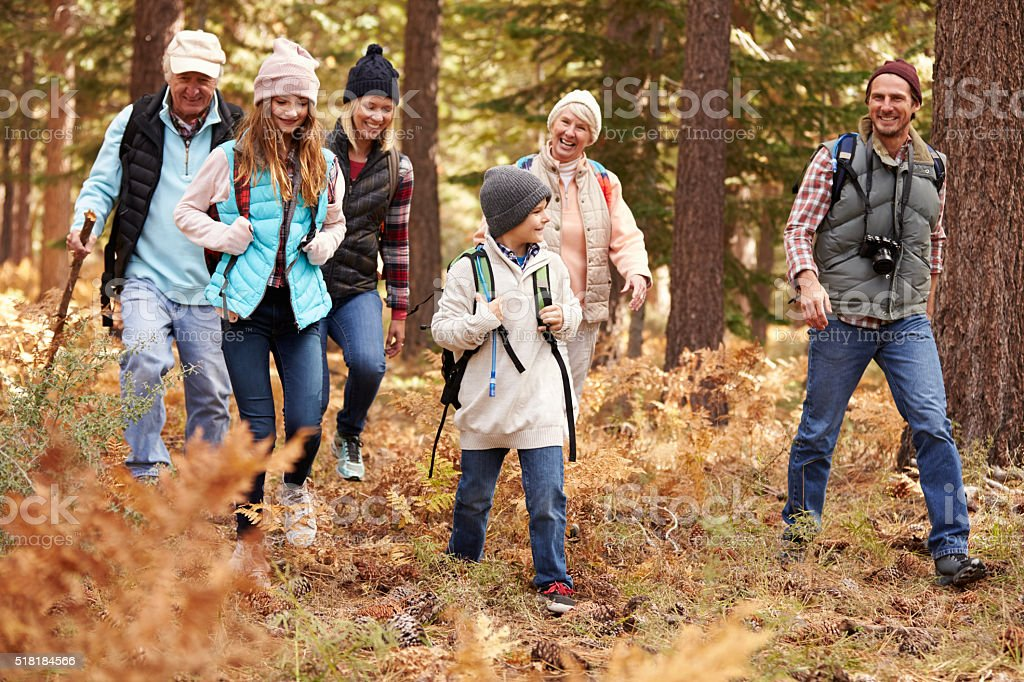 Multi generation family hiking in a forest, California, USA stock photo