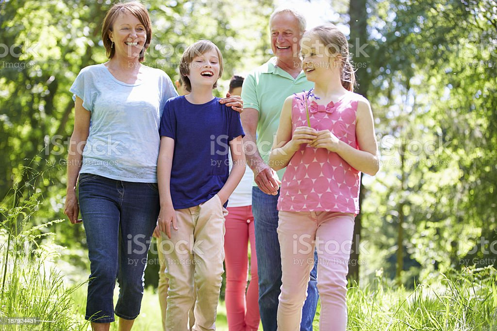 Multi Generation Family Walking Through Summer Countryside royalty-free stock photo