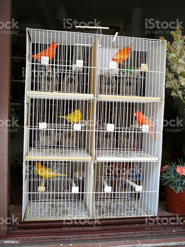 Multi storey bird cage stock photo