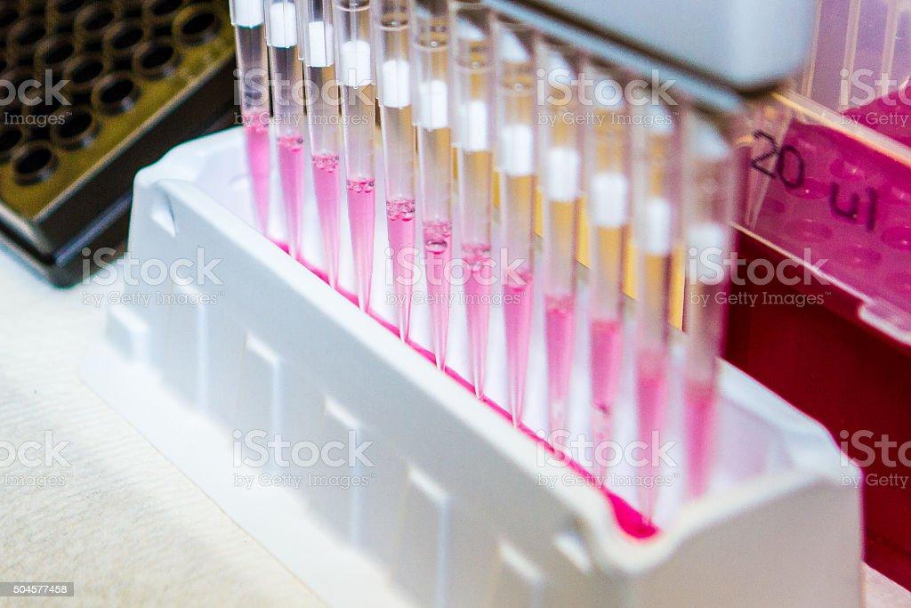 Multi-Channel Pipette DNA Research stock photo