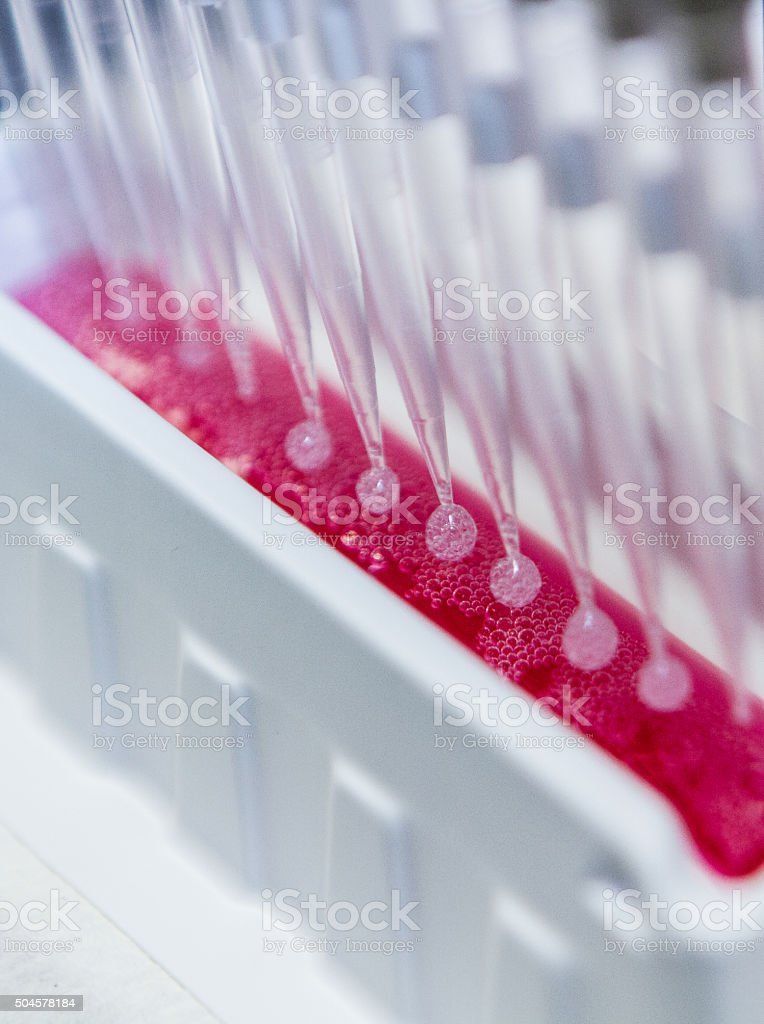 Multi-Channel Pipette DNA Research stock photo